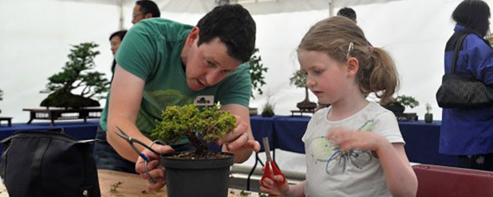 Huntington Children's Workshop: Bonsai Builders