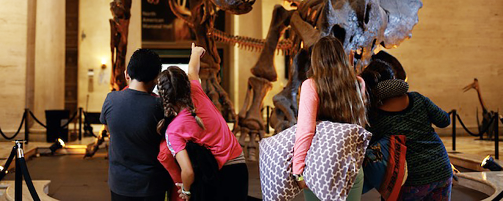 Family Sleepover at the Natural History Museum