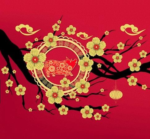 Plaza West Covina's Lunar New Year celebration