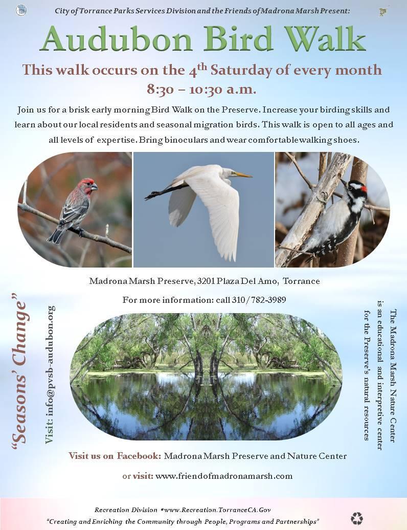 Audubon Bird Walk