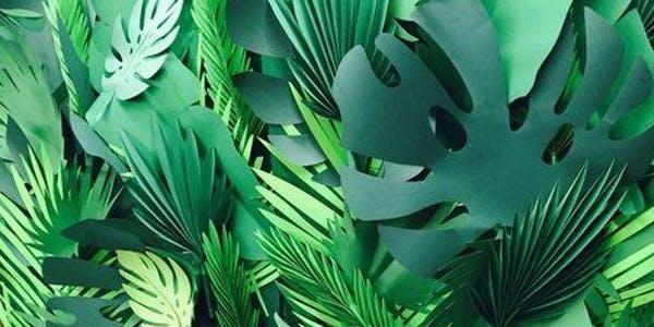 CraftLab Family Workshop: Botanical Sculptures and Wearable Art