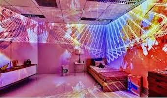 Flutter: A Contemporary Art Experience