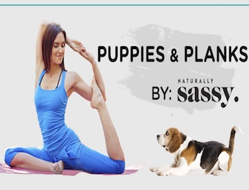 Puppies and Planks