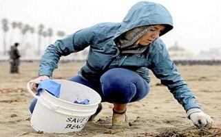 California Coastal Cleanup Day at El Dorado Nature Center