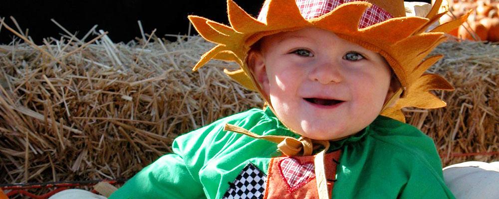 Forneris Farms Annual Harvest Festival