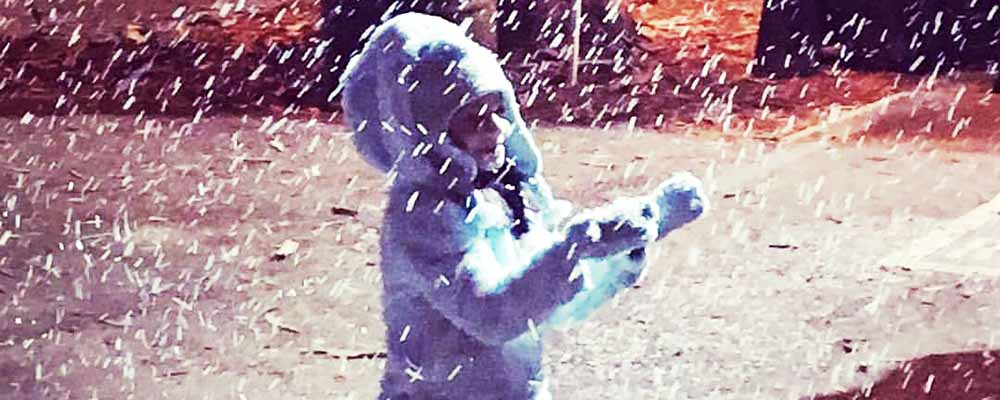 Snow Day L.A.
