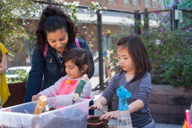 Family Garden Workshop: Pumpkin Decorating in the Garden