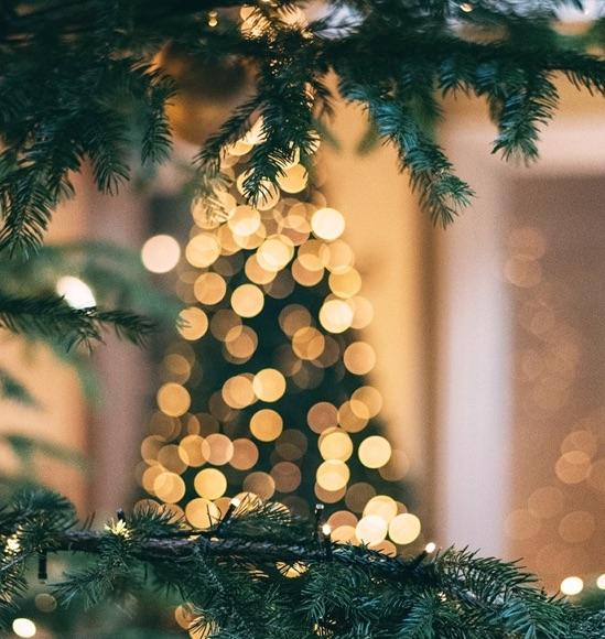 The Palisades Village Christmas Tree Lighting
