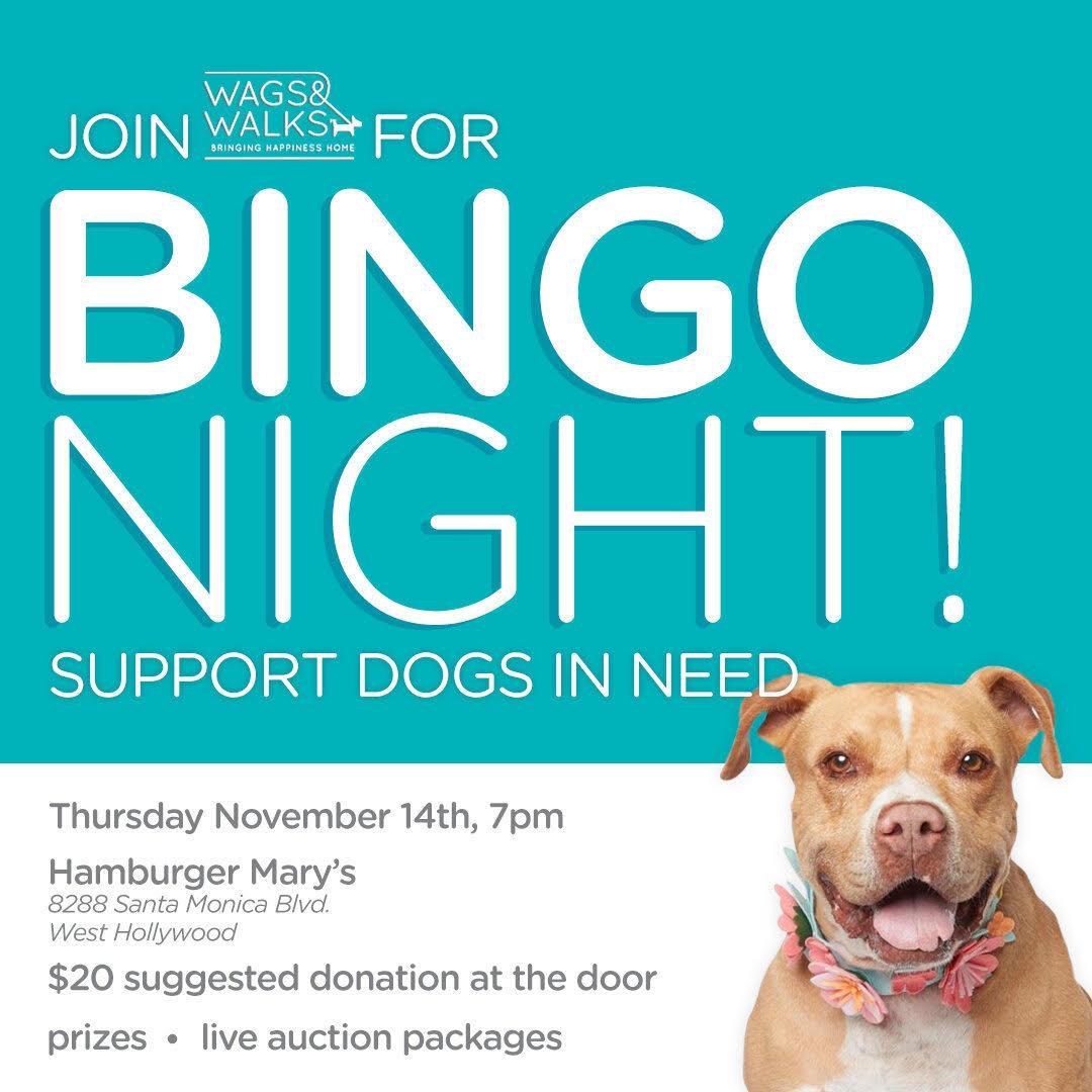 Wags and Walks Bingo Night