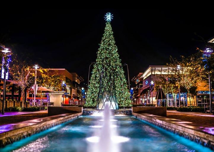 Tree Lighting Celebration at The Collection at RiverPark