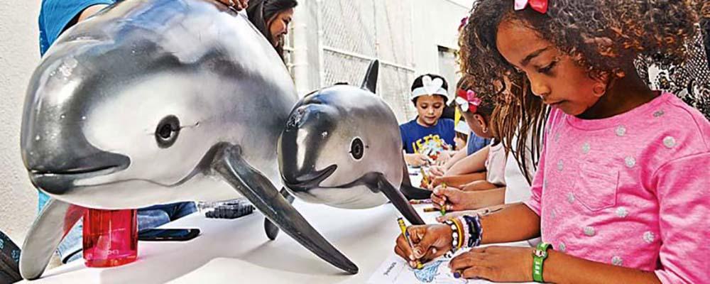 Whale Fiesta