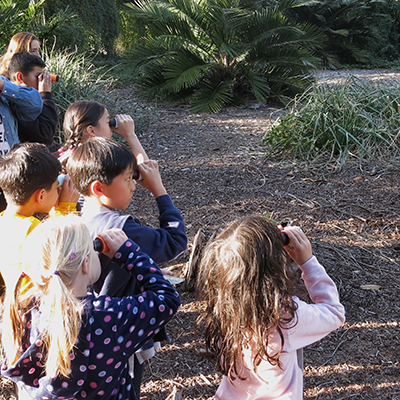 Arboretum Summer Nature Camp