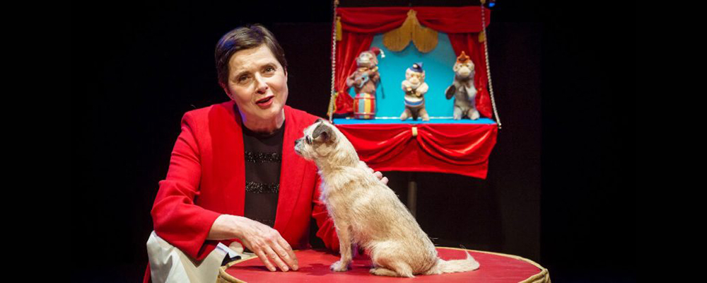 Isabella Rossellini's Link Link Circus
