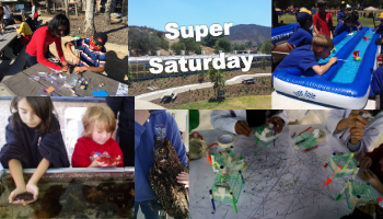 Super Saturday: OPUSD Sustainability Fair and Community Recycling event