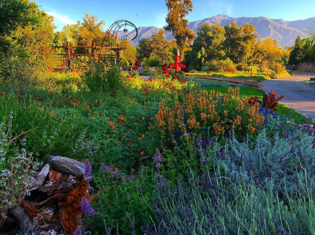 L.A. County Arboretum Open for Visits