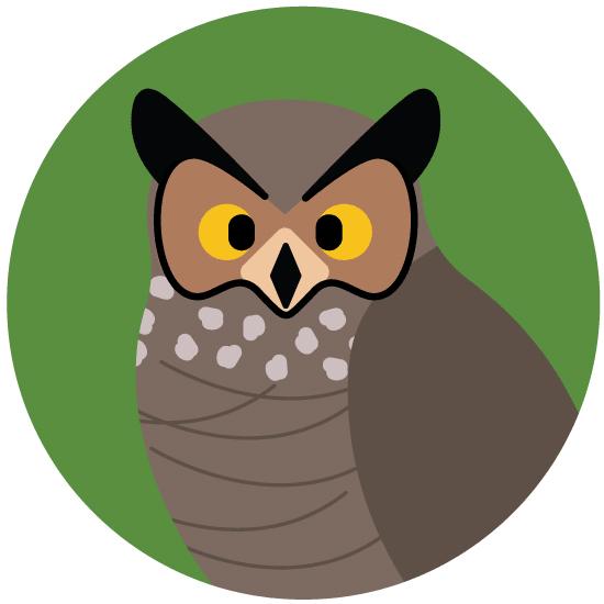 Audubon for Kids Owl Prowl