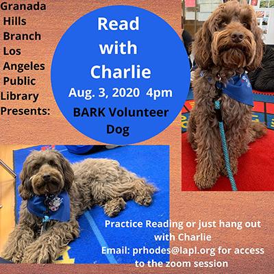 Read to BARK Volunteer Dog Charlie