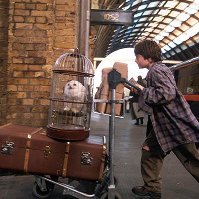 Back to Hogwarts Virtual Celebration