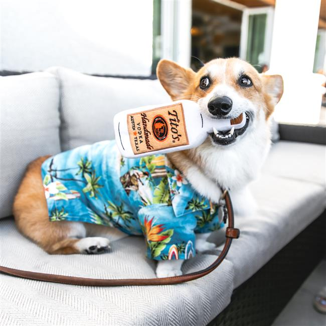 Howl-O-Ween Yappy Hour at A&O Kitchen + Bar