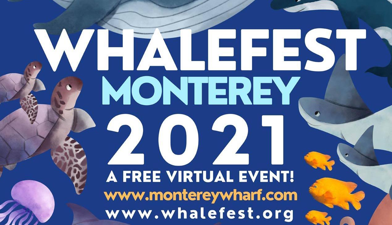 11th Annual Virtual Whalefest Monterey