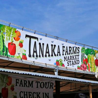 Springtime U-Pick Wagon Rides at Tanaka Farms