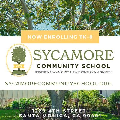 Sycamore Community School