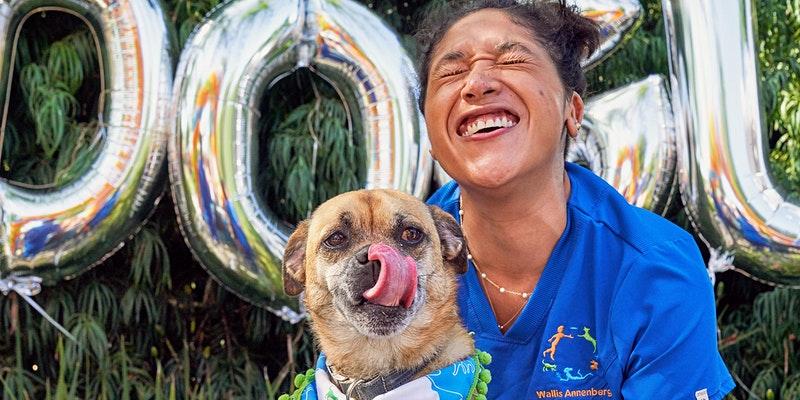 DOGust Birthday Celebration